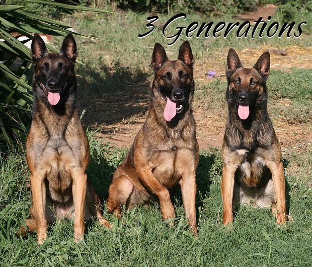 3 Generations, Grandma, Daughter, Granddaughter  Cali, JaJa, Kira
