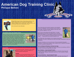 American Dog Training Clinic