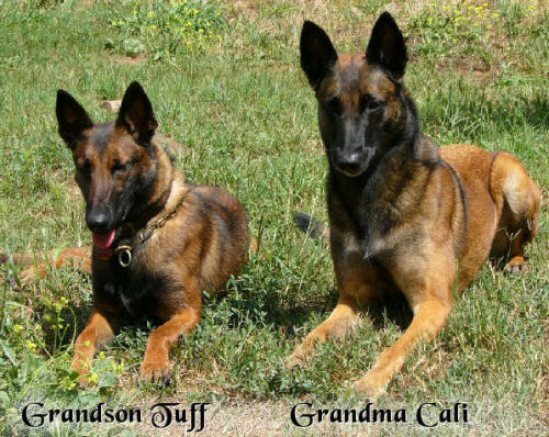 Tuff & Cali, Grandson and Grandma